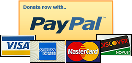 Pay Pal Buy Now
